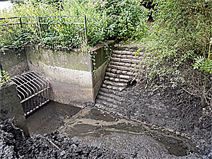 Culvert and Guard after Clearing