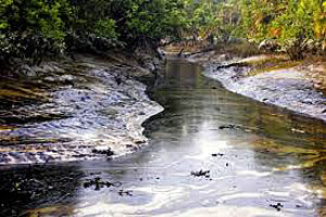 A pollution or oil spill in a water body needs urgent action